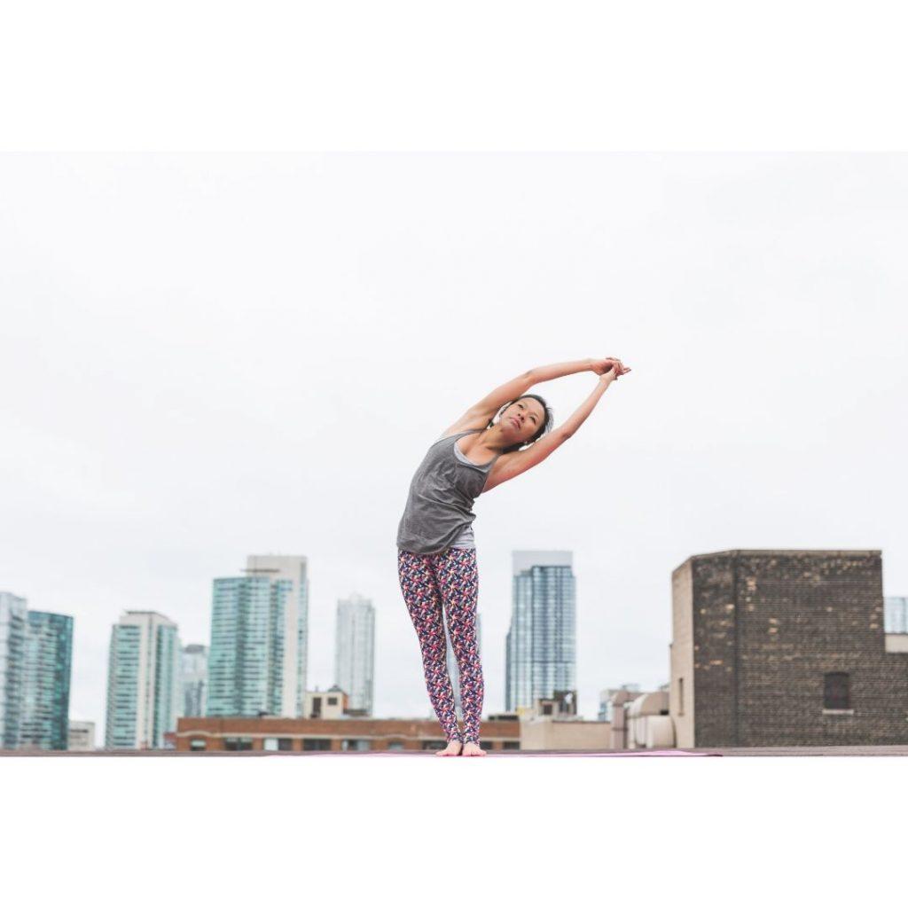 formation gestes et postures